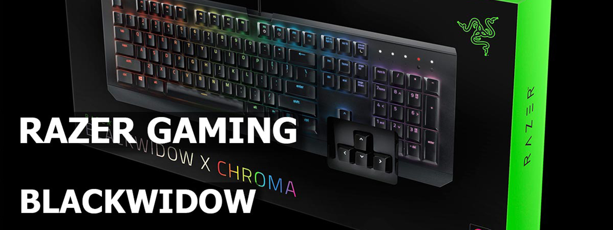razer-blackwidow-x-chroma-gallery-front1